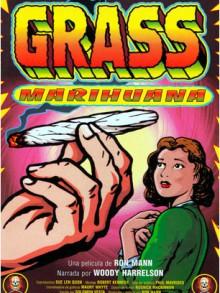 Grass, l'histoire de la marijuana aux USA
